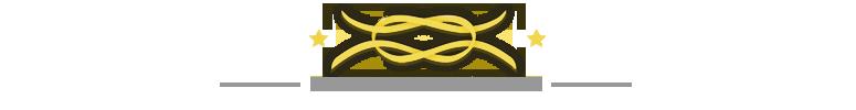 secureyourdream.com logo
